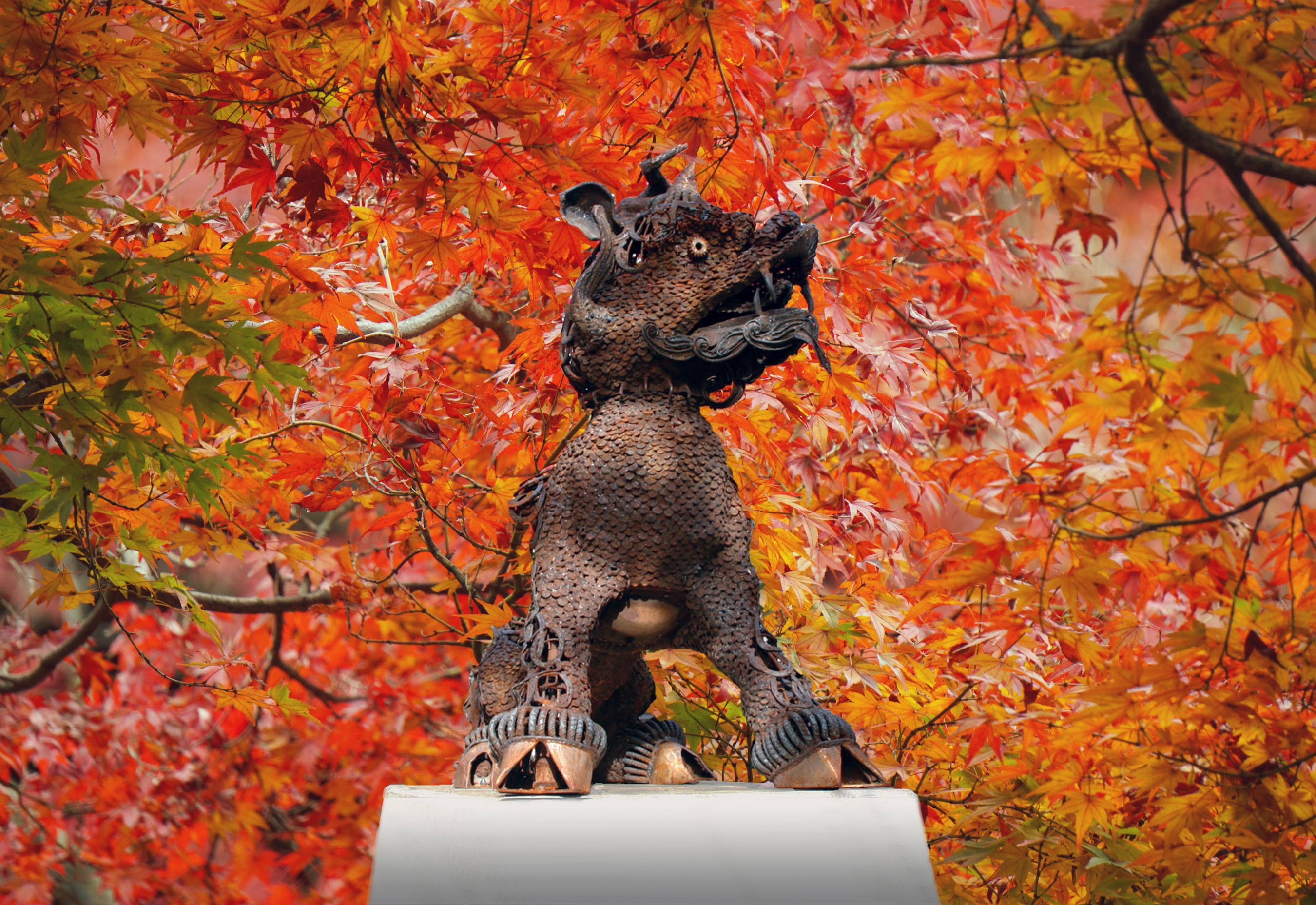 Boxer Statue surrounded by fall leaves