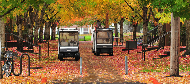 Two lovely golf carts resting on the walkway in a beautiful fall scene