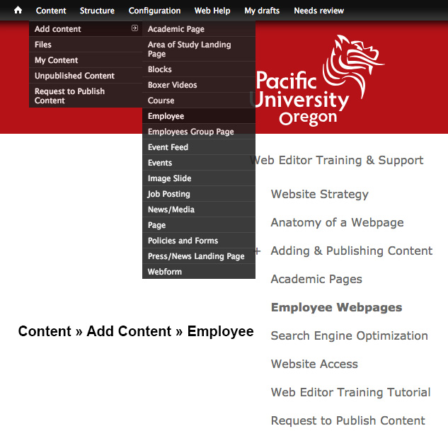 How to add new Employee Content