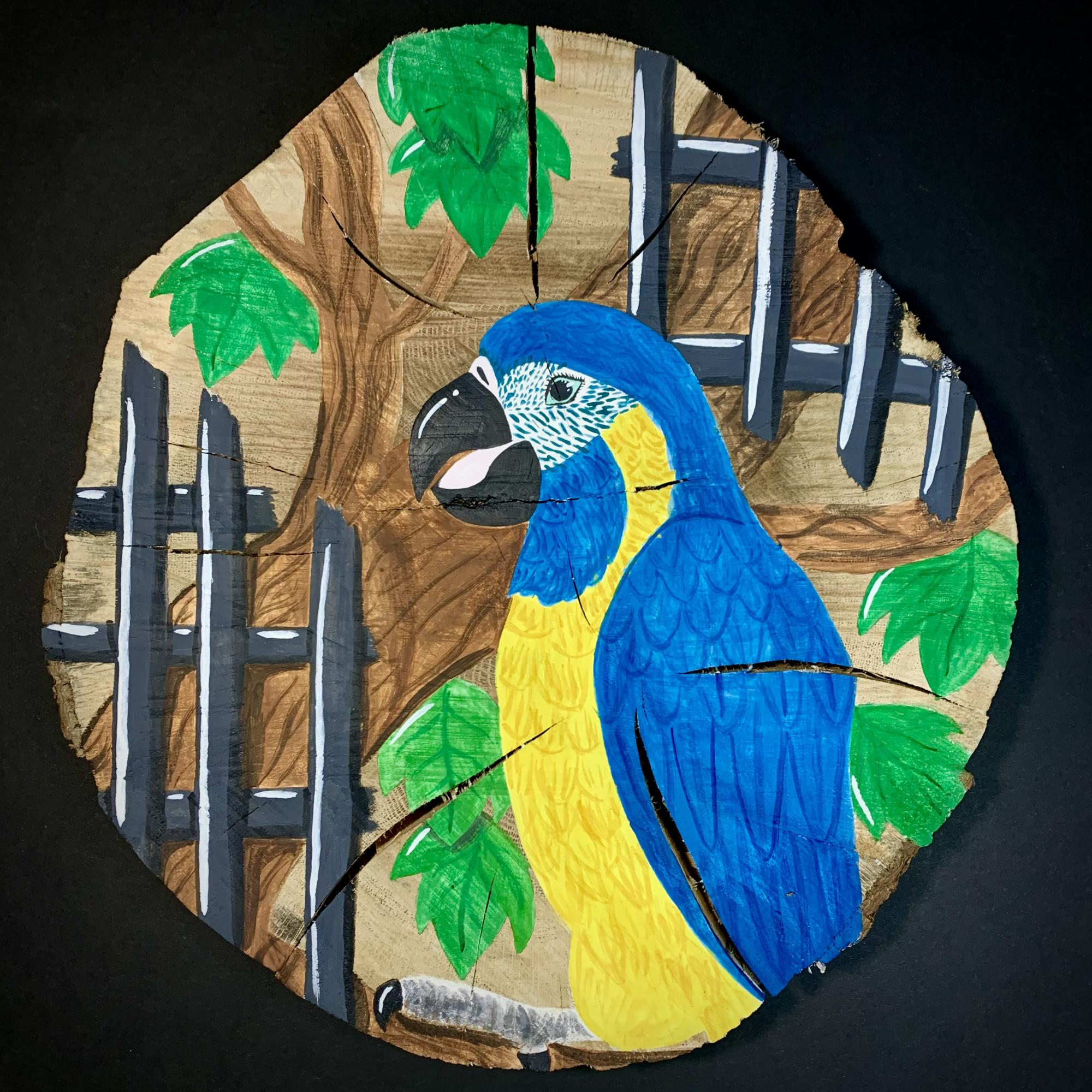 painting of macaw