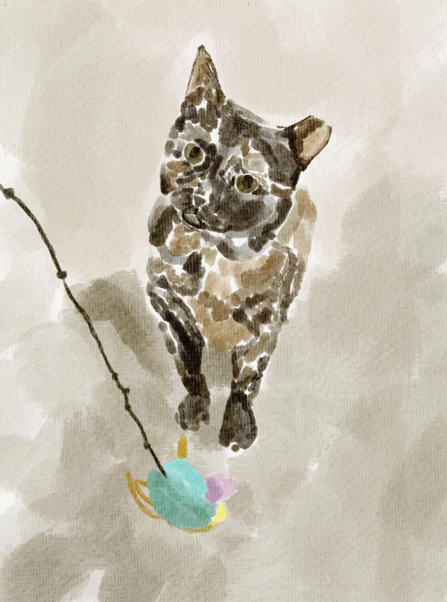 painting of cat about to play