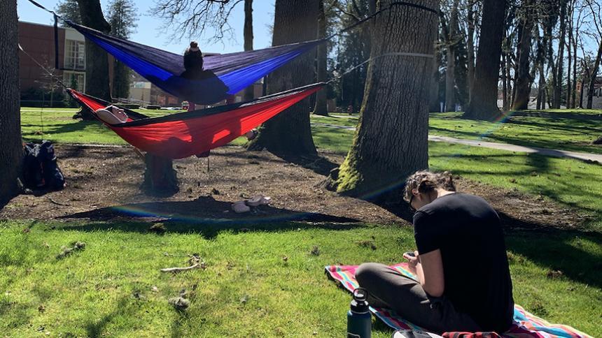Students outside on hammocks