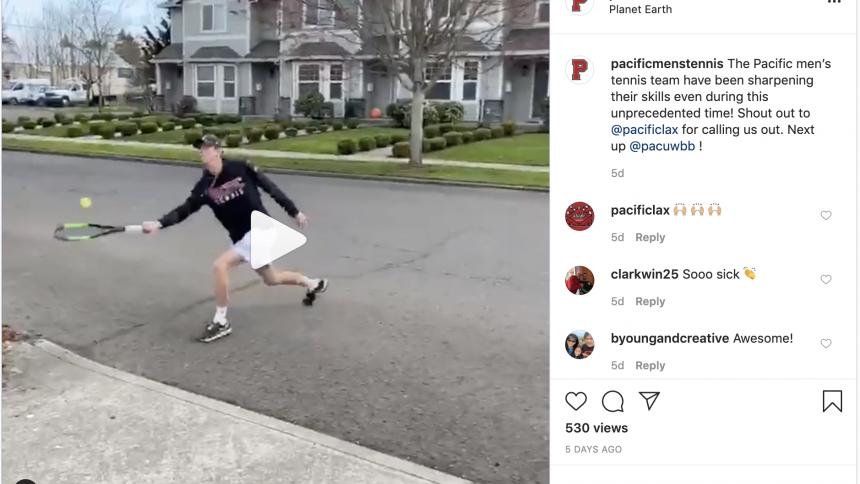 Screen shot of Boxer tennis Instagram video