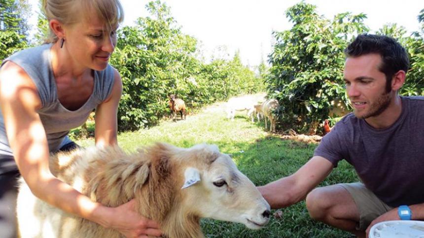 Brandon and Kelleigh harvesting coffee on their farm.