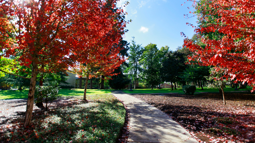 Photo of Forest Grove Campus walkway