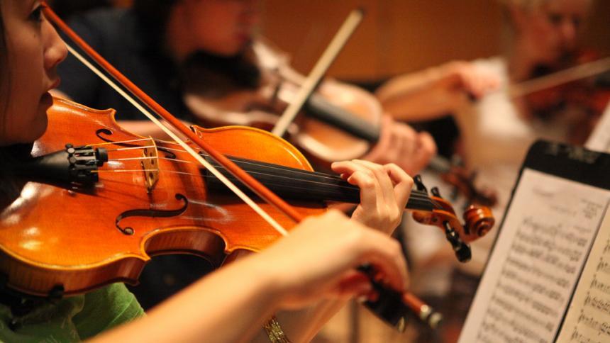 Violin musicians