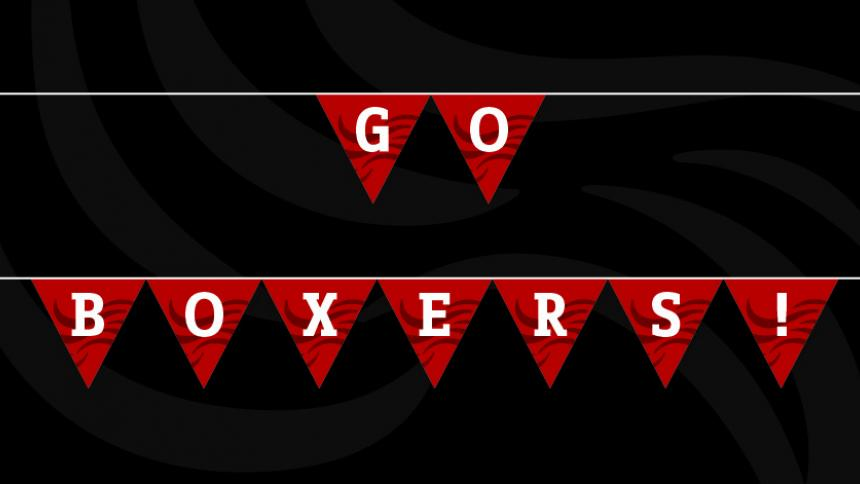 "Printable ""Go Boxers!"" Bunting"