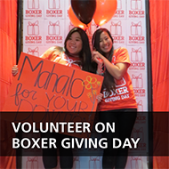 Volunteer on Boxer Giving Day